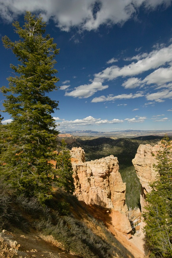 0515-Bryce-overlook-2